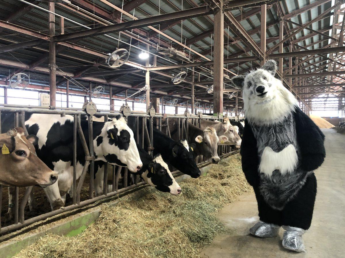 【富山県黒部市 くろべ牧場まきばの風にて】牧場に遊びに行ってきたちゃ!