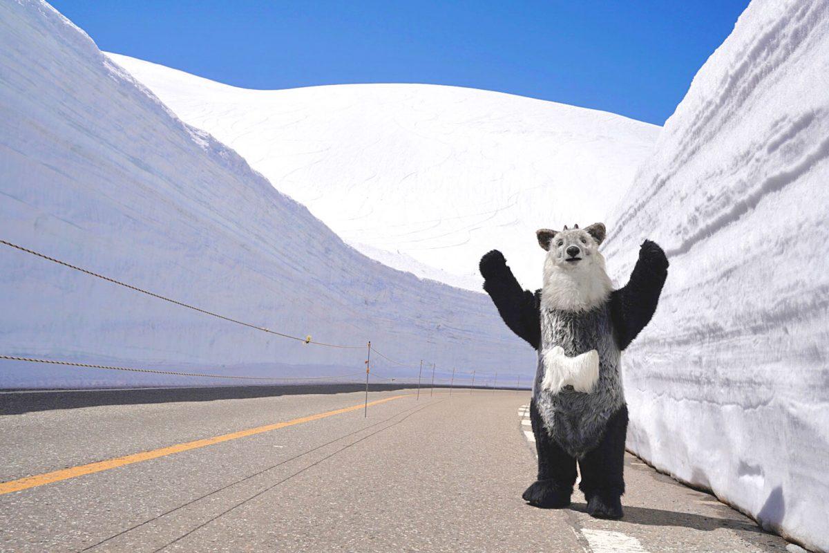 【富山県立山町 室堂にて】雪の大谷を見てきたちゃ!